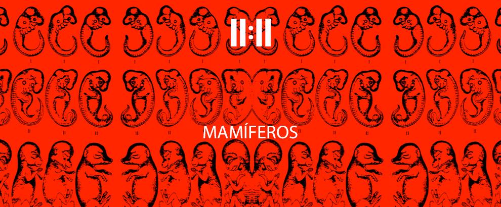 mamiferos-site-main